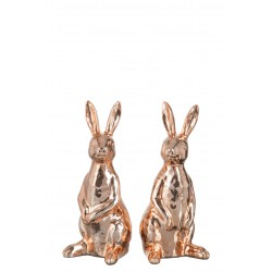 Koppel konijntjes