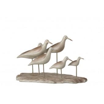 Beeld met vogels
